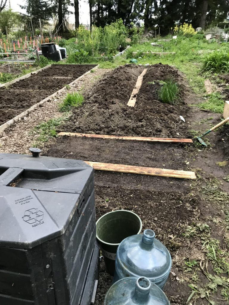 community garden plot with plastic compost bin